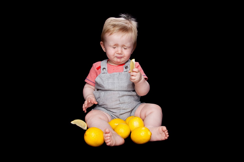 Lemon Babies at Made Portraits in now a finalist in the Somerset Business Awards